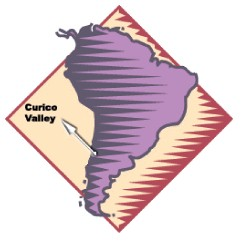 Chilean Grape Regions curico valley